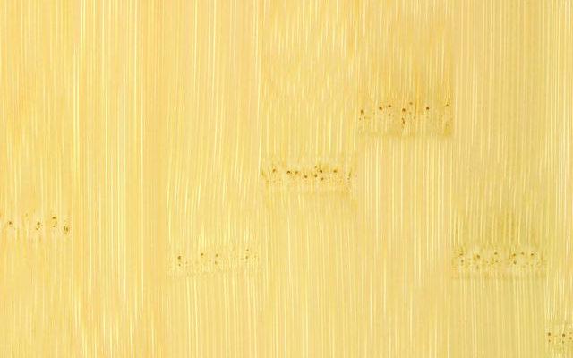 20120201-01_D_HR_PPN-Panel